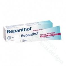 BEPANTHOL POMADA PROTECTORA 100 G