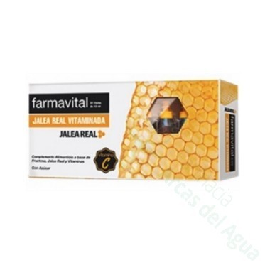 FARMAVITAL JALEA AMP BEBIBLE 1000 MG 20 AMP